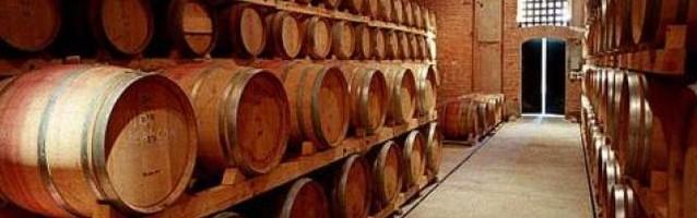 vitivinicultura 638x200