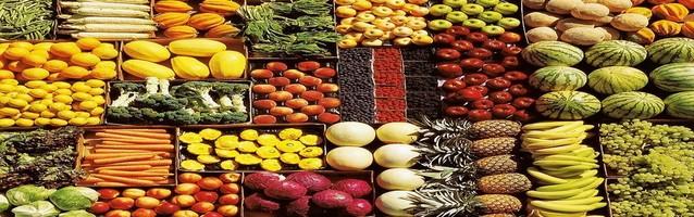 Alimentos organicos, frutas y verduras 638x200