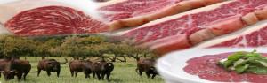 Carne 638x200